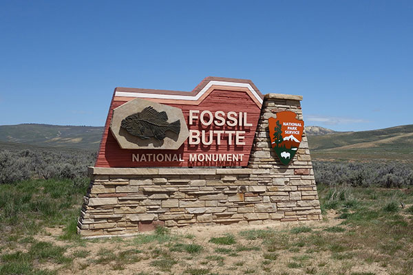 Custom modern monument signage for Fossil Butte in Miami, FL